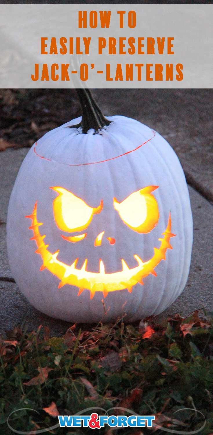 Preserve your Jack-o'-lantern with this easy method! Your carved pumpkin will be looking good for weeks.