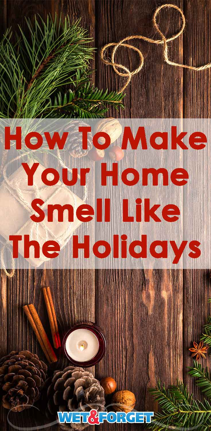 The holidays are here! Make your home smell like the spirit of the season with these ideas!
