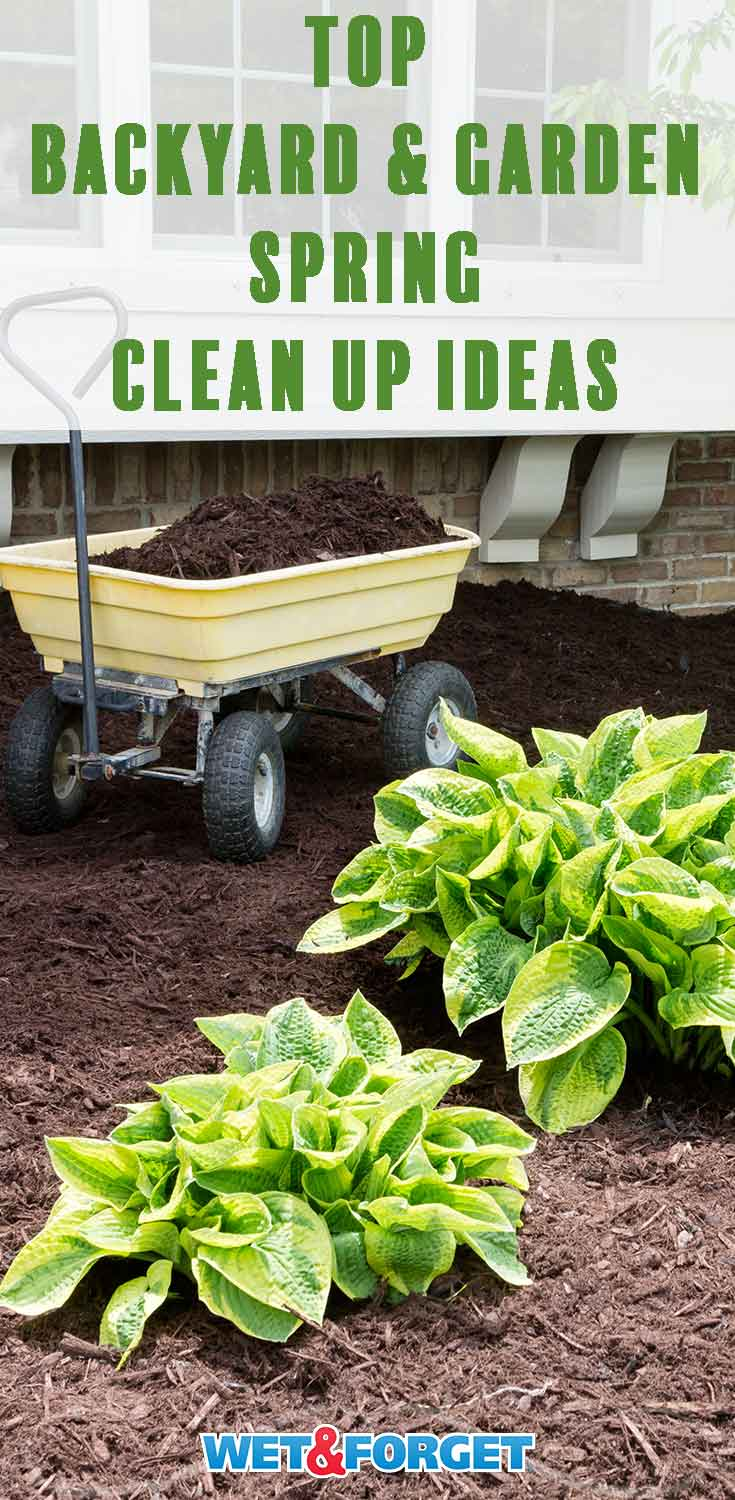 Get your backyard and garden organized and ready for warmer weather with our top clean up ideas!