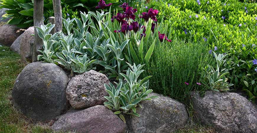 Natural stone makes a beautiful flower bed border.