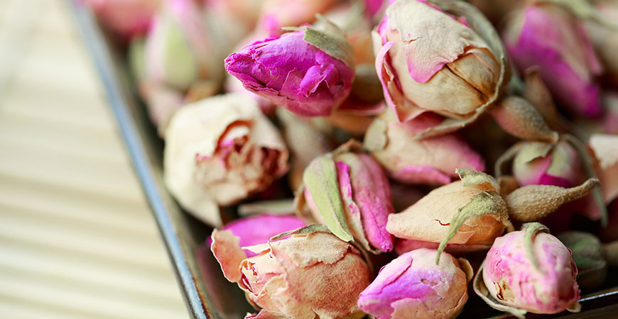Learn how to dry roses
