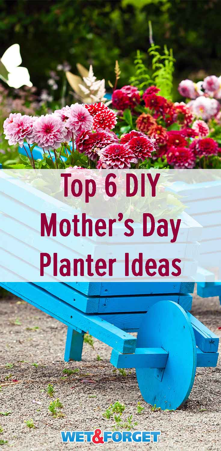 Need a gift idea for Mother's Day? Make one of these easy DIY planters!